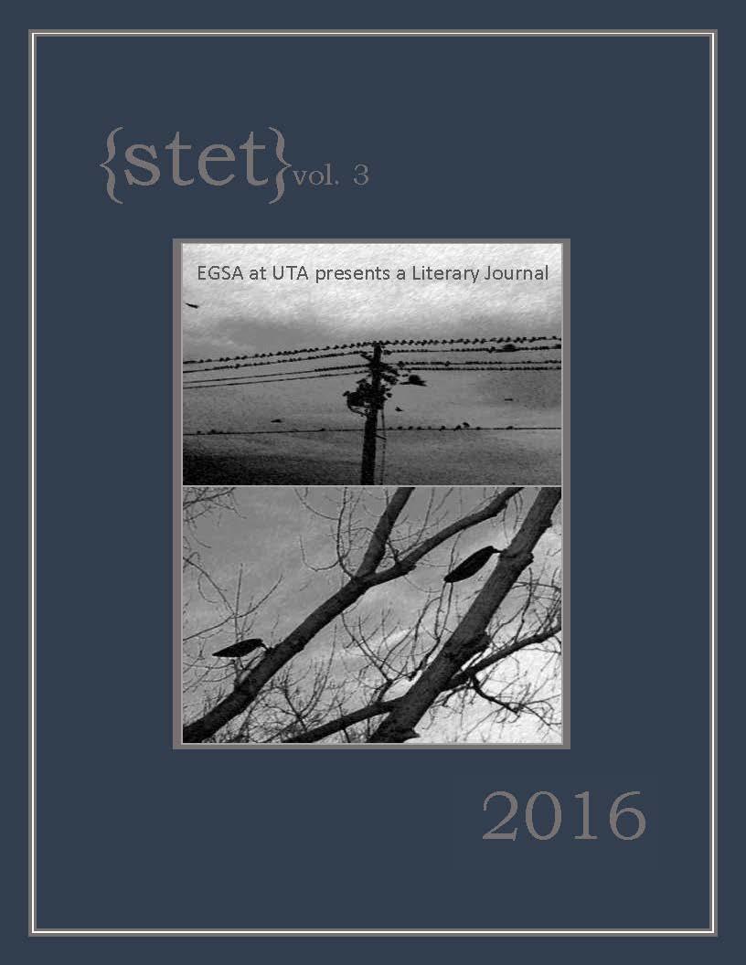 {stet} vol.3 2016